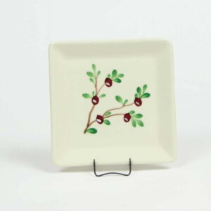 Cranberry Square Appetizer Plate