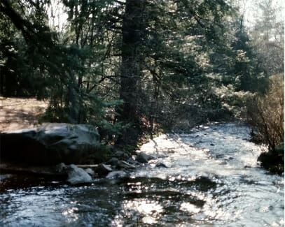 EMERSON BROOK AT CONFLUENCE WITH BLACKSTONE RIVER