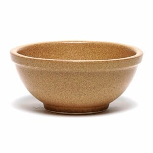 Go Green Earthware Pasta Bowl