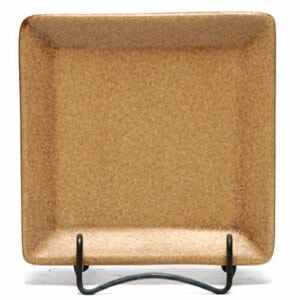Go Green Earthware Square Appetizer Plate