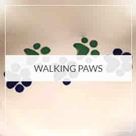 Walking Paws Pottery Collection